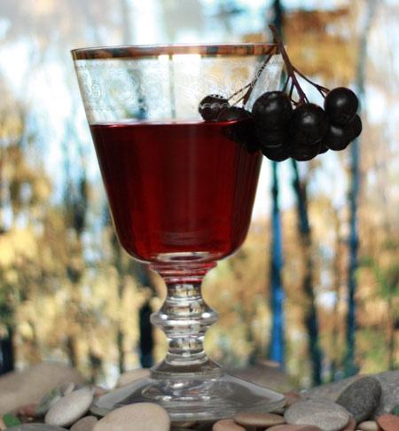 Как в домашних условиях сделать вино из рябины в домашних условиях