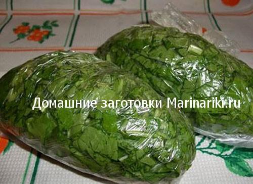 kak-zamorozit-shhavel-na-zimu-v-morozilke-1