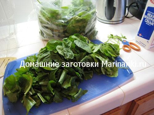 kak-zamorozit-shhavel-na-zimu-v-morozilke-5