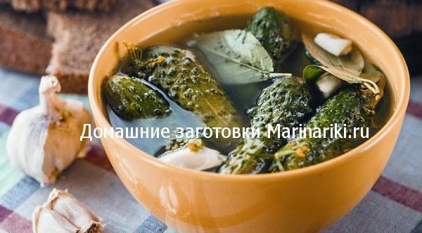 kvashenye-ogurcy-s-xrenom