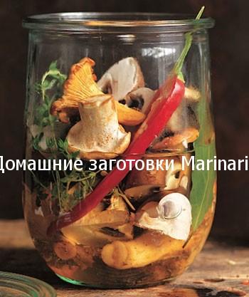 marinovannye-lisichki-na-zimu-2