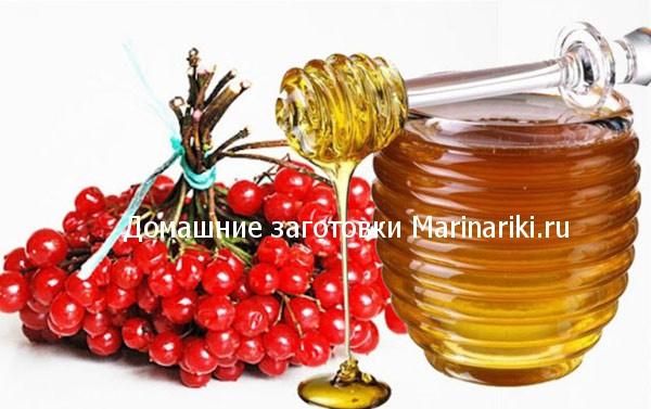 kalina-s-medom-recept-na-zimu