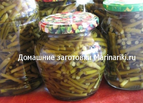 kak-i-kogda-marinovat-cheremshu