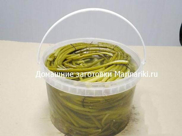 kak-zasolit-cheremshu-v-domashnix-usloviyax-recepty-solenoj-cheremshi