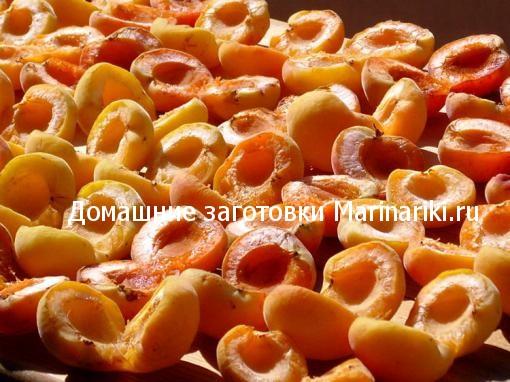kak-sushit-abrikosy-na-solnce-v-duxovke-v-sushilke-bez-kostochek-2