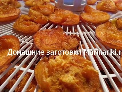 kak-sushit-abrikosy-na-solnce-v-duxovke-v-sushilke-bez-kostochek-5