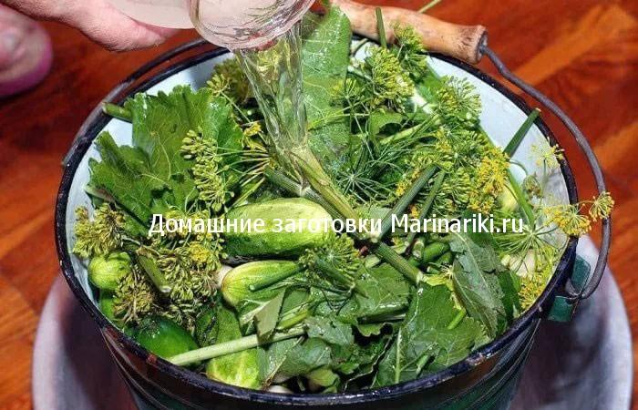 ogurcy-kvashenye-kak-iz-bochki-v-bankax-3