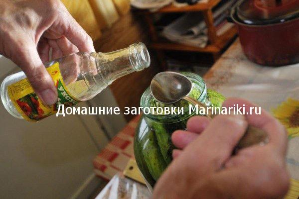 pochemu-vzryvayutsya-ogurcy-oshibki-zasolki-ogurcov-4