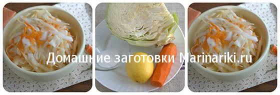 zasolka-kapusty-s-limonom-2
