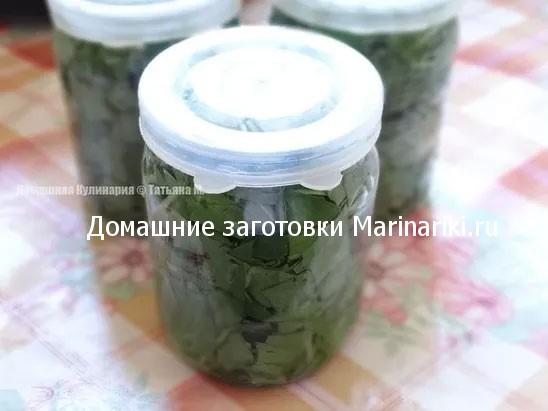 recept-zagotovki-shhavelya-na-zimu-pod-kapronovoj-kryshkoj