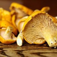 Cолянка с грибами на зиму - Пальчики оближешь
